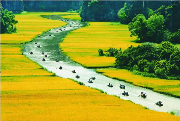 Ciruit nord vietnam