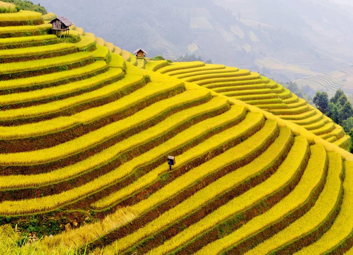 trek Vietnam