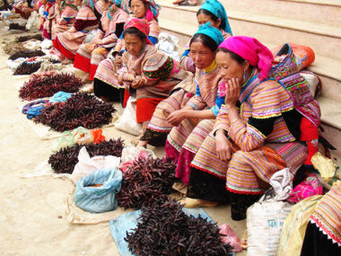 Visage du Vietnam 15 jours